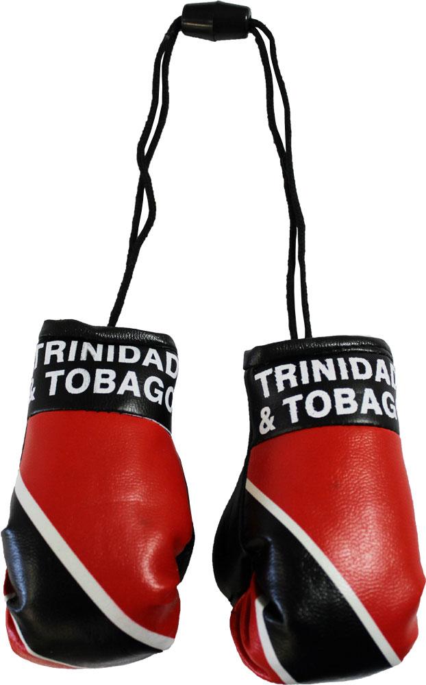 Buy Trinidad And Tobago Mini Boxing Gloves Flagline