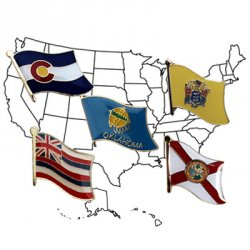 Buy 50 US States - Single Flag Lapel Pin Set | Flagline
